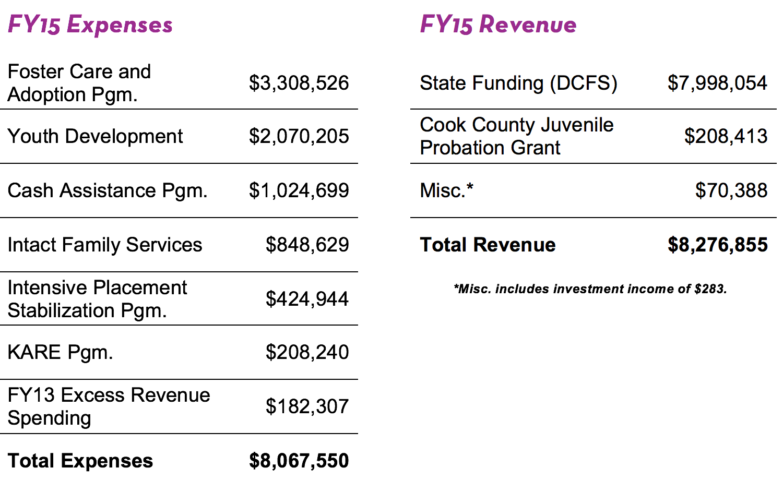 Kaleidoscope Financials - FY15 Revenue & Expenses